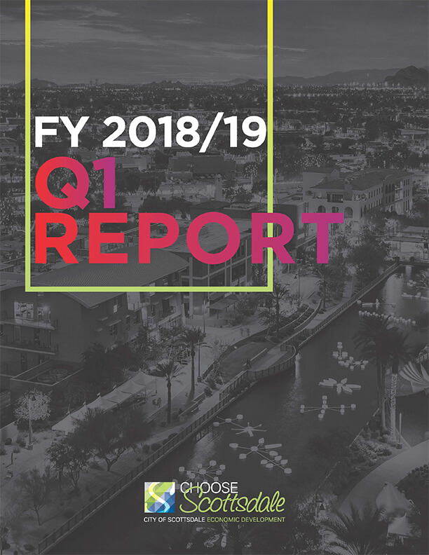 Cover image of fy 2018-19 Q1 Report